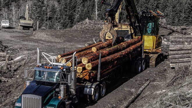 Used Forestry, Logging